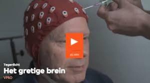 gretige brein